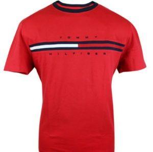 Men's Tommy Hilfiger t shirt.